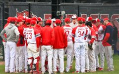 Palatine baseball battles cancer, defeats Fremd