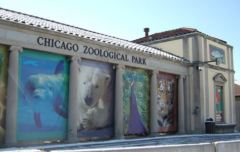 The morality of zoos