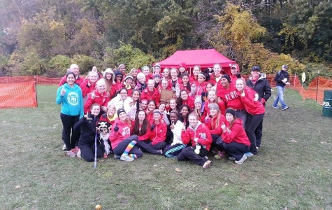 Palatine Girls MSL Champion Team