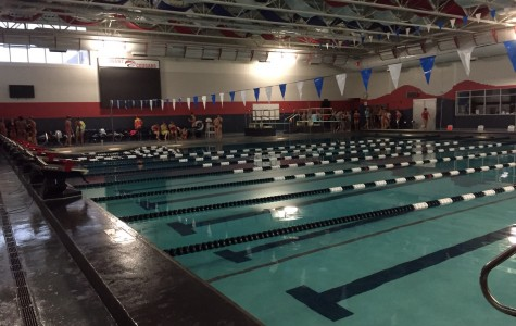 Palatine swimmers await a new pool
