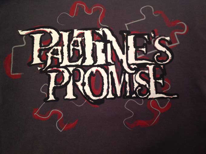 Palatine%27s+PROMISE++began+holding+extended+homeroom+to+teach+their+lessons.