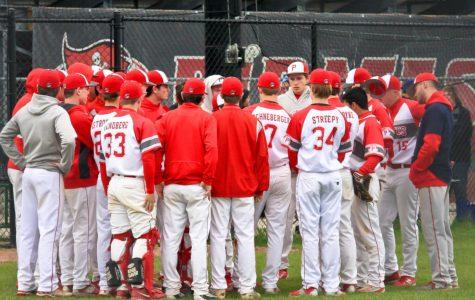 Palatine baseball battles cancer, defeats Fremd