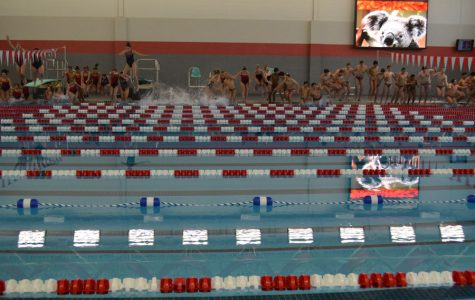 Slideshow: Palatine's new pool!
