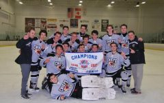 D211 ices hockey championship