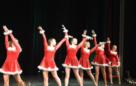 Slideshow: Dance Show 2017