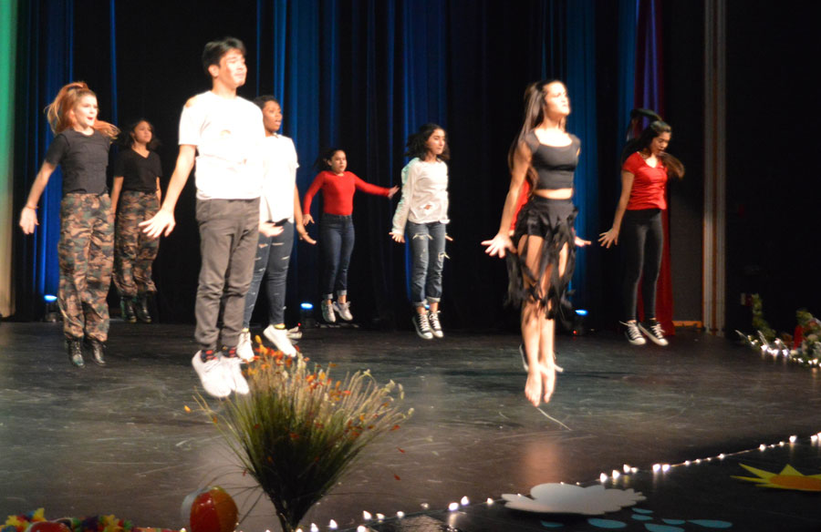 Groups of students show off their dancing skills at the 2017 Dance Show.