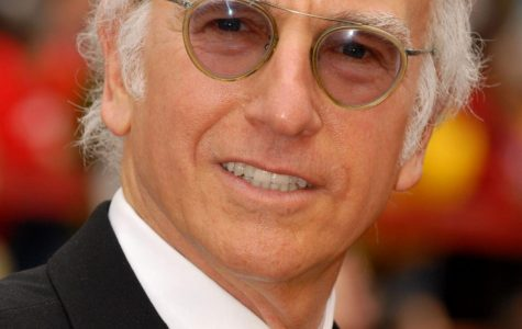 Did Larry David go too far with his Holocaust joke?