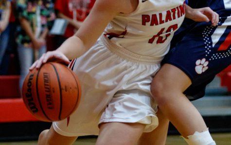 Seniors have provided leadership for this season's basketball team.