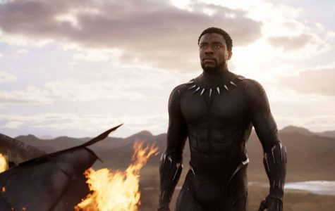 Black Panther claws into hearts around the world