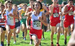 Boys cross country scores top 11 in state-level meet