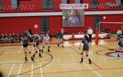 Holz's jump serve leads Palatine to victory