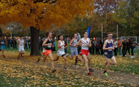 Palatine junior Richard Jacobo ranks 23rd overall in  the IHSA Boys 3A State Cross Country Final.