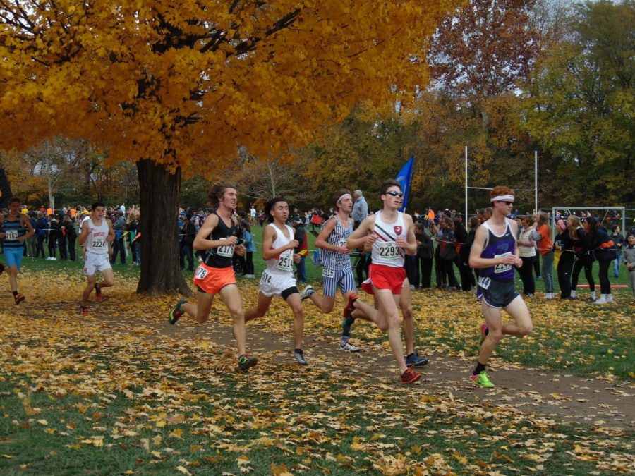 Palatine+junior+Richard+Jacobo+ranks+23rd+overall+in++the+IHSA+Boys+3A+State+Cross+Country+Final.