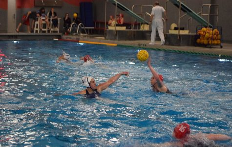 Slideshow: Girls waterpolo