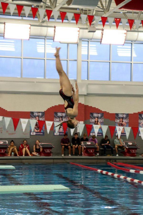 Slideshow: Swimming & diving highlights