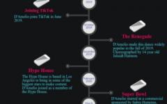 The rise of a TikTok star